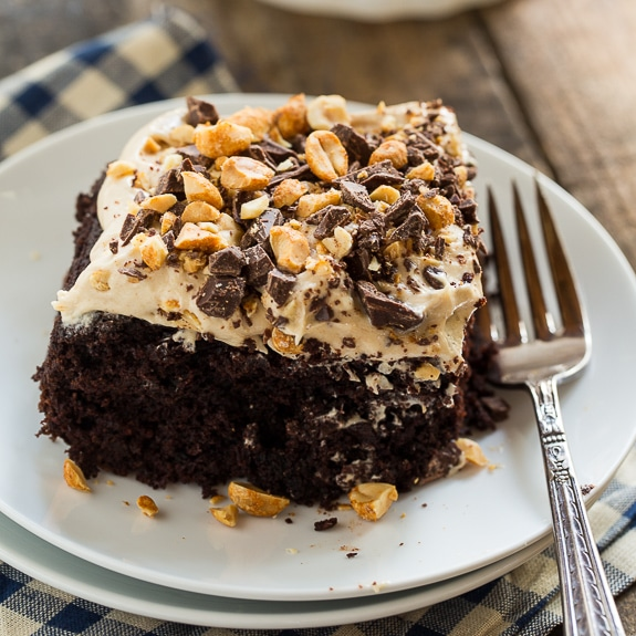 Dark Chocolate Cake with Extra Peanut Butter