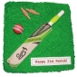 bat-with-cricket-ground-cake thumb